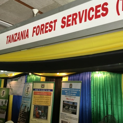 Tanzania Forestry Services
